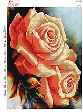 Вышивка бисером Троянди №103