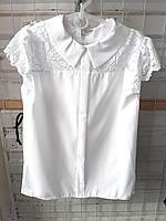 Блузка шкільна дівчаток ( р. 128-152) купити оптом