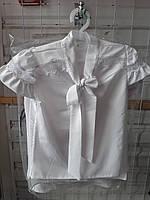 Блузка шкільна дівчаток ( р. 116-134) купити оптом