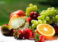 Профилактика Рака.Пища , которая препятствует развитию рака