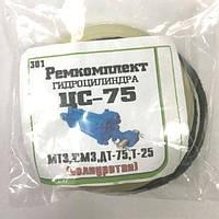 Р/к гидроцилиндра ЦС-75, полиуретан (МТЗ, ЮМЗ, ДТ-75, Т-25)