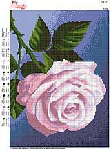 Вышивка бисером Троянда №117