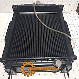 Радиатор Д-65 латунь, фото 2