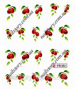 Водные наклейки для ногтей FR051