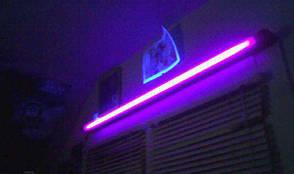 36W / BLB Ультрафіолетовий освітлювач