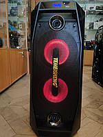 Универсальная музыкальная колонка (Комбик) Temeisheng 802 500W