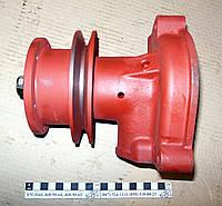 Насос водяной Д-240 (Юбана) 240-1307010