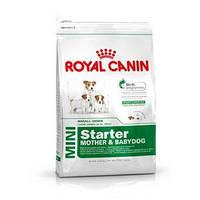 Корм для щенков Royal Canin Mini Starter (Роял Канин Мини Стартер) 3 кг
