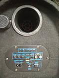 """Автомобільний Сабвуфер 8"""" Temeisheng TC8-1 з підсилювачем, фото 4"""