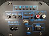 """Автомобільний Сабвуфер 8"""" Temeisheng TC8-1 з підсилювачем, фото 3"""