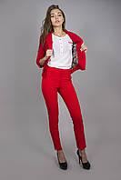 Молодежный пиджак классического кроя с подкладкой КРАСНЫЙ, фото 1