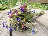 Букет з натуральних сухоцвітів та злаків, h-30 см.,d-13 см., 30 грн., фото 2
