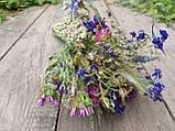 Букет з натуральних сухоцвітів та злаків, h-30 см.,d-13 см., 30 грн., фото 3