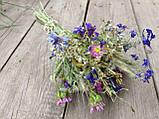 Букет з натуральних сухоцвітів та злаків, h-30 см.,d-13 см., 30 грн., фото 4