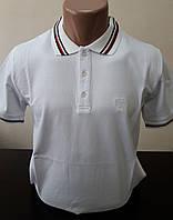 Футболка-тенниска (поло) мужская MYZ. Размер М