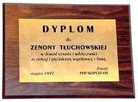 Диплом на золоте (1+0), Днепропетровск