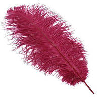 Перья страуса Strike Ostrich Feathers - Red