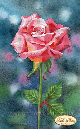 Схема для вышивки бисером Нежная красавица, фото 2