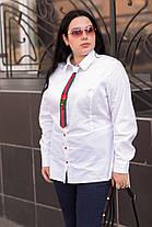 Женская рубашка с баской в деловом стиле белая батал с 48 по 82 размер, фото 2