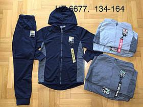 Спортивный костюм-двойка для мальчиков оптом, Active Sports, 85% хлопок,  размеры 134-164, арт. HZ-6677