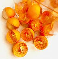 Попрыгунчики средние Апельсин