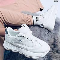 Кроссовки женские белые эко кожа 2852, фото 1