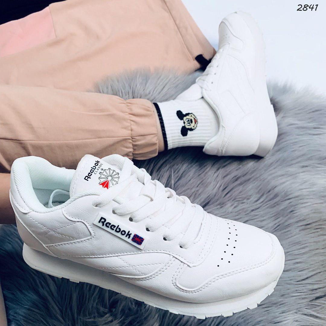 Кроссовки женские белые под бренд 2841