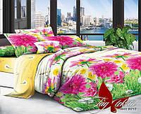 ✅ Комплект постельного белья двуспальный (Поликоттон) TAG XHY717