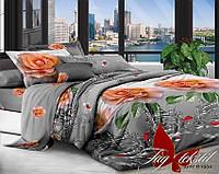 ✅ Двуспальный Евро комплект постельного белья (Поликоттон) TAG XHY1984