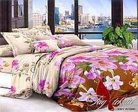 ✅ Семейный комплект постельного белья (Поликоттон) TAG XHY1666