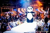 Наша Панда покоряет ночные клубы в Дубаи