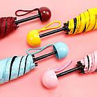 Мини-зонт в капсуле Capsule Umbrella mini | Компактный зонтик в футляре | Бордовый, фото 3