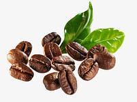 Кофемолка Domotec MS-1306 220V/200W | Измельчитель кофе, фото 5