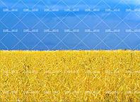 """Съедобная сахарная/вафельная пищевая печать лист А4 """"Текстура/Фон Украина"""""""