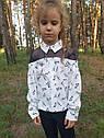 Блуза нарядная с котиками Раяна ТМ Suzie Размеры 122-140, фото 4