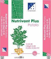 Нутривант Плюс картофель - водорастворимое удобрение для картофеля