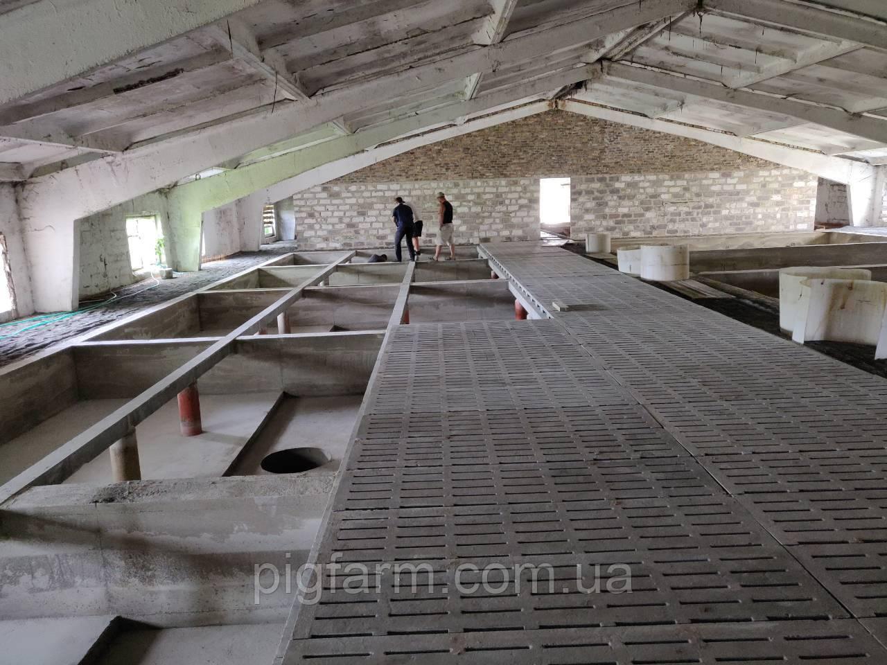 Процесс реконструкции новой площадки для откорма