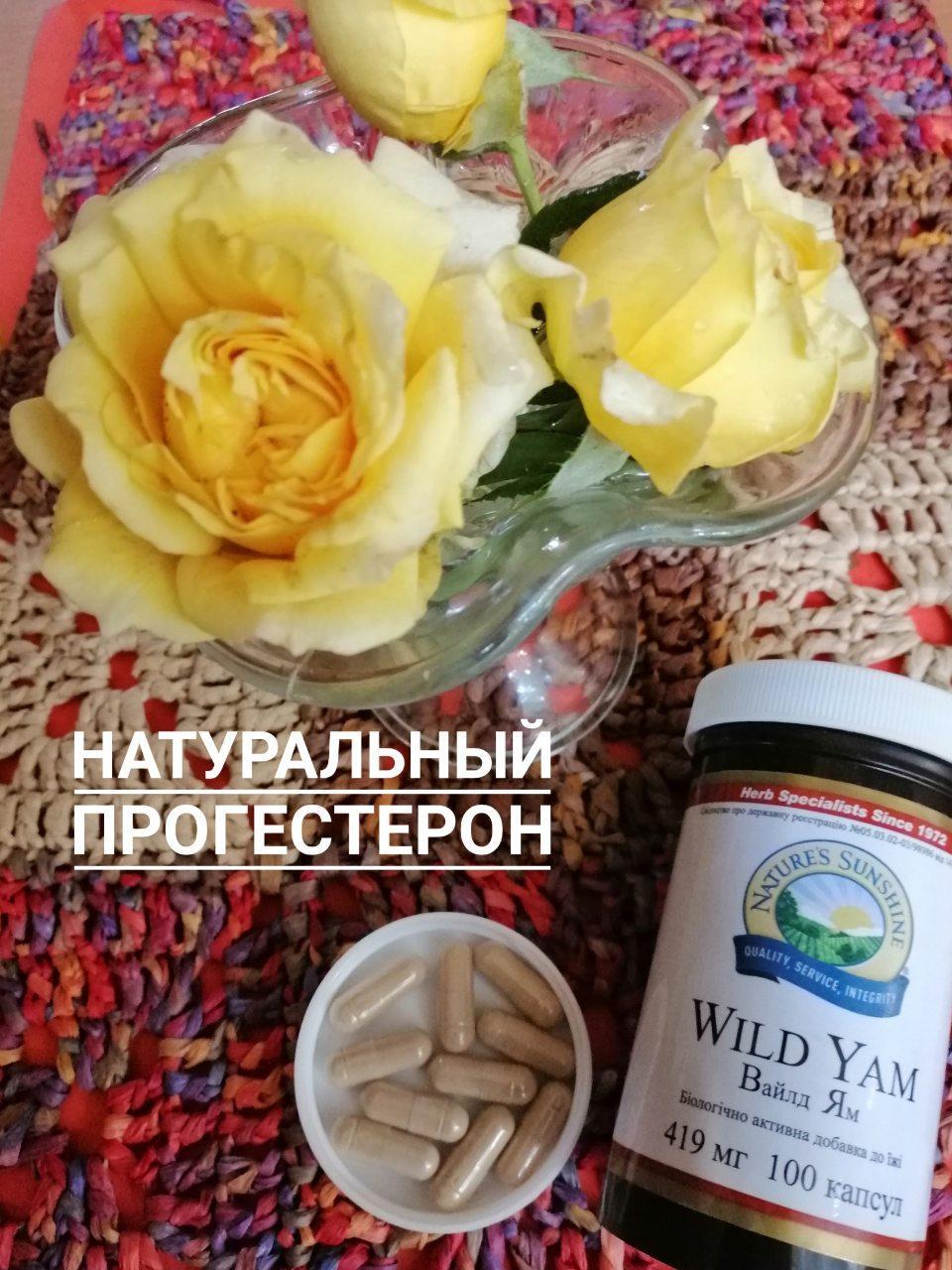 Роль прогестерона в здоровье женщины. Дикий Ямс БАД НСП - натуральный прогестерон.