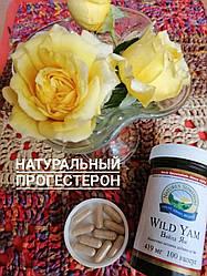 Роль прогестерону в здоров'ї жінки. Дикий Ямс БАД НСП - натуральний прогестерон.