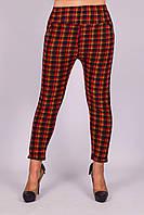 Женские утепленные штаны на меху Ира 133-1 XL. Размер 42-48.