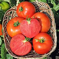 Семена томата Полфаст F1 5 г, Bejo