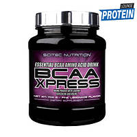 Аминокислоты bcaa Scitec Nutrition Bcaa Xpress (700 g)