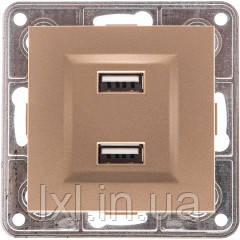 Розетка USB двойная. 2*1A, 5V, DC бронзовый TESLA