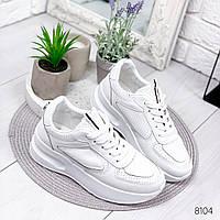 Кроссовки женские Terry белые , женская обувь