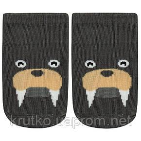 Детские антискользящие носки Морж Berni, фото 2
