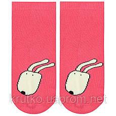 Детские антискользящие носки с начесом Пёс Berni, фото 3