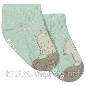 Детские антискользящие носки Полярный Медведь Berni, фото 2