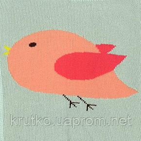 Леггинсы для девочки Птица Berni, фото 2