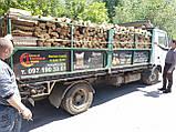 Дрова дубовые колотые., фото 5