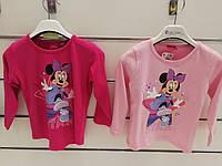 Реглан для девочек оптом, Disney, 2-6 лет,  № MIN-G-T-SHIRT-172A